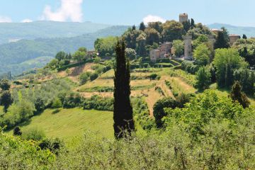 Panzano viewed from the north
